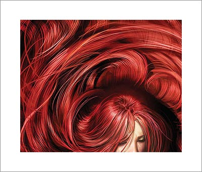 This wonderful lavish display of red hair is a detail from the cover of