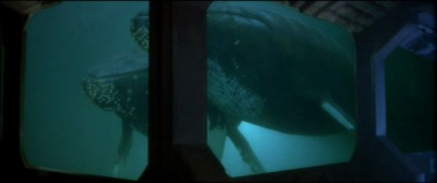 The Whales from Star Trek IV: The Voyage Home