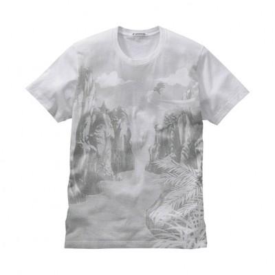 Uniqlo Anime T-shirts: Dragonball