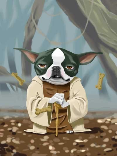 Ultimate Boston Terrier Star Wars Dog Art Set