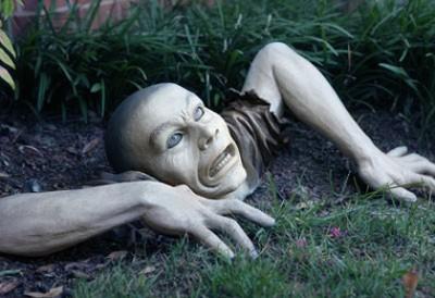 Garden Zombie: an actual example