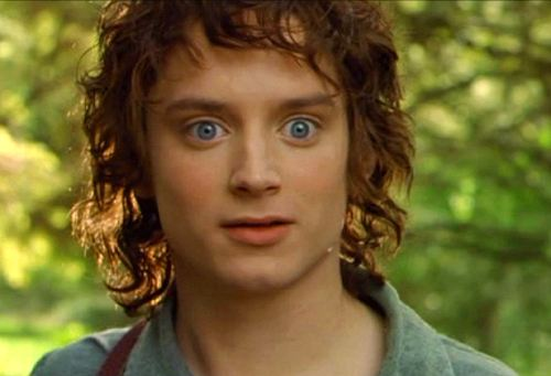 Frodo's Back!