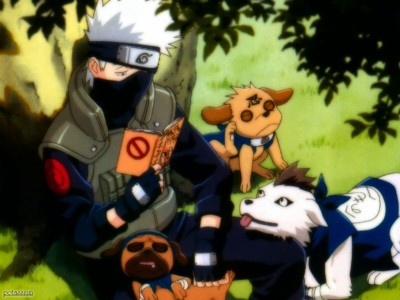 kakashi-and-the-dogs