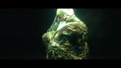 Resident Evil 6 C-Virus Cocoon